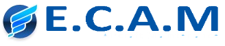 Egyptian Company for Aircraft Maintenance